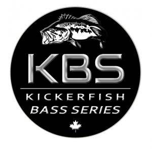 KBS logo paint