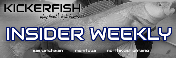 Kickerfish Insider Weekly